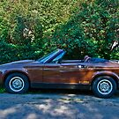 1980 Triumph TR-7 Drophead Coupe by Bryan D. Spellman