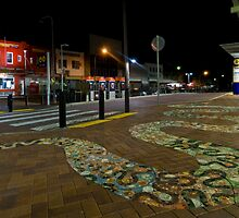 Snake Crossing by Jason Ruth