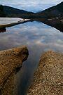 Freshwater Creek by Travis Easton