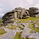 Dartmoor: Black Tor (North) by Rob Parsons