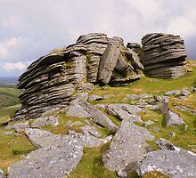 Dartmoor: Black Tor (North) by Rob Parsons