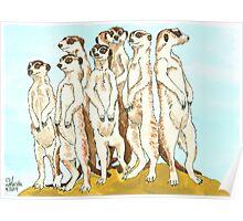 Daily Doodle 11-Meerkats Poster