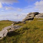 Dartmoor: High Willhays by Rob Parsons
