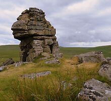 Dartmoor: Lints Tor by Rob Parsons