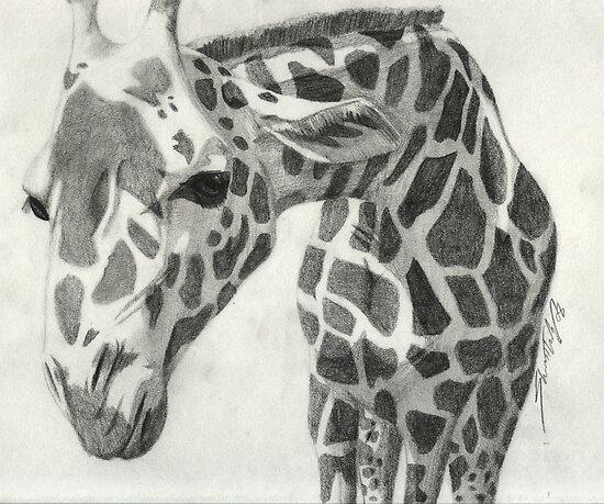 A giraffe in pencil by agenttomcat
