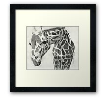 A giraffe in pencil Framed Print