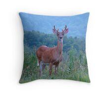 A Grand Design Throw Pillow