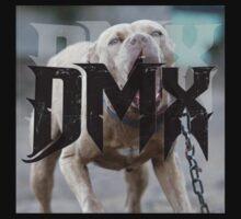 DMX by Railrats
