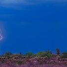 Lightning Bolt Strike in The Desert by Bo Insogna