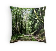 The path less traveled. Throw Pillow