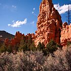 Red Rock,Utah by ejlinkphoto