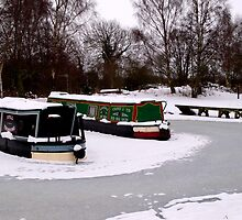 Frozen In - Melbourne Canal by charlylou