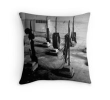 Cleanliness is Next To Godliness ~ West Park Asylum Throw Pillow