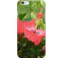 Hibiscus Flowers iPhone Case/Skin