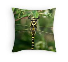 Cloes up female ringer Throw Pillow