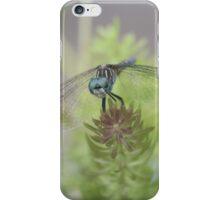 Dreamy Dragon iPhone Case/Skin
