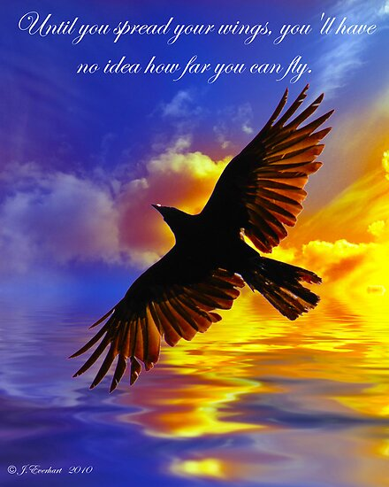 Until you spread your wings, you'll have no idea how far you can fly by Julie Everhart