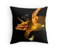 Saling to the Island of Rainbow  Throw Pillow