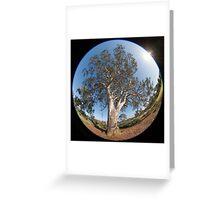 Suburban Gum Tree Greeting Card