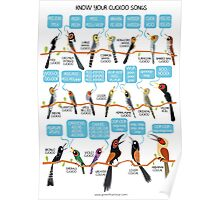 Know your cuckoo songs Poster