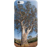 Suburban Gum Tree iPhone Case/Skin