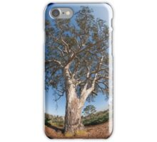 Suburban Gum Tree iPhone Case/Skin