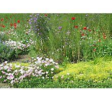 A Garden of Love Photographic Print