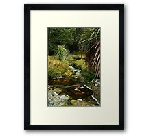 Pandani Grass at Weindorfers Framed Print