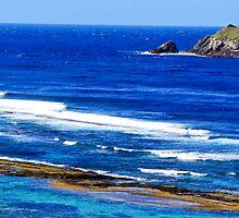 Ocean waters study 1 by john  Lenagan