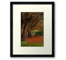 Forrest Park Framed Print