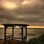 A Place to Ponder by Barbara  Brown