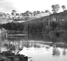 Murrrumbidgee - A reflection in Winter by Creativecap