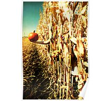 Harvest Greetings Poster