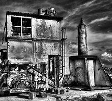 Apocalypse Crane - Cockatoo Island - Sydney - Australia by Bryan Freeman