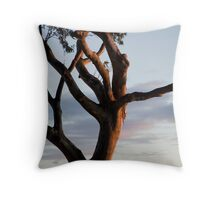 Tree at Amity Throw Pillow