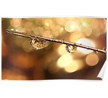 A Couple Of Drops Of Bokeh Poster