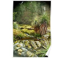 Pandani Grass at Weindorfers, Cradle Mountain Poster