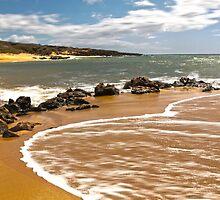 Pristine Polihua Beach  by Jessica Veltri