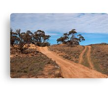 A Road Less Travelled Canvas Print