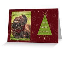Heads up Santa's coming Greeting Card