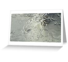 Water Collection Greeting Card