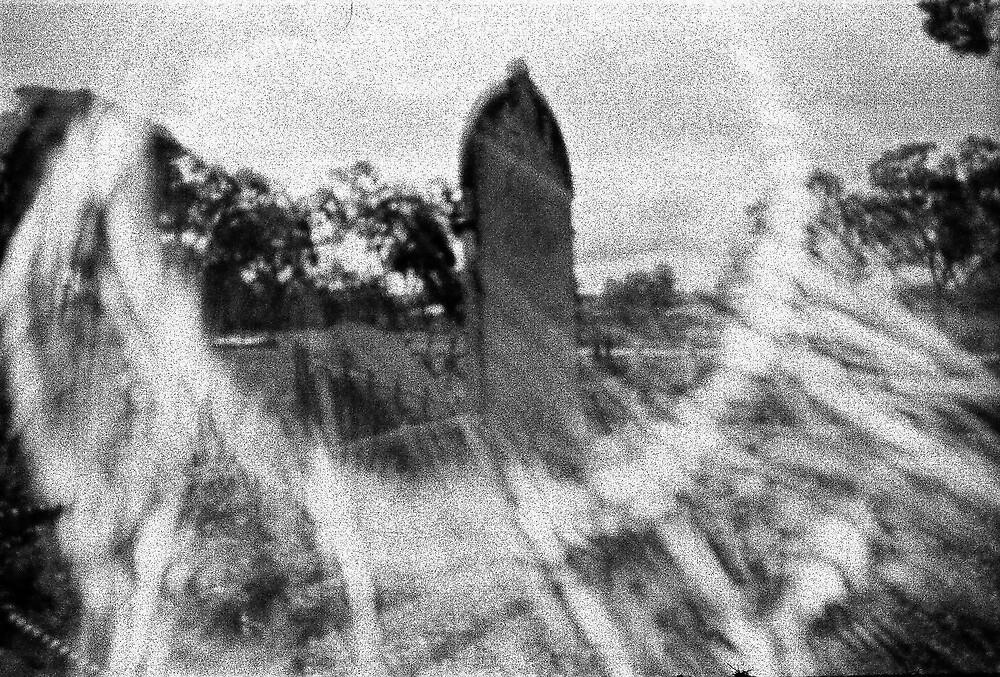 White Hills Cemetery by Terri-Anne Kingsley