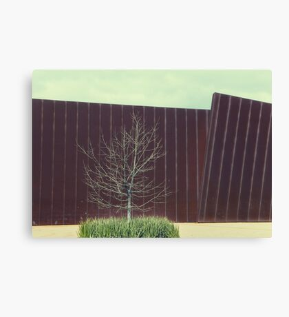 the urban tree.... Canvas Print