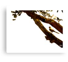 Tree CMXC Canvas Print