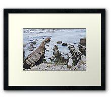 Tidal rocks in Lulworth Cove, Dorset Framed Print