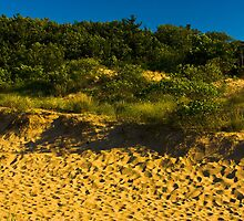 Oval Beach Dunes Saugatuck, Michigan at Sunset by DunesLover