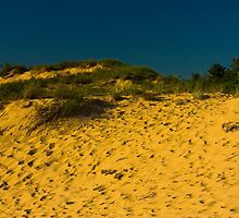 Oval Beach Dunes Sunset Saugatuck, Michigan by DunesLover