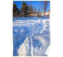 Waist deep in garden snow Poster
