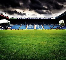 Sheffield Wednesday FC by Mike Higgins