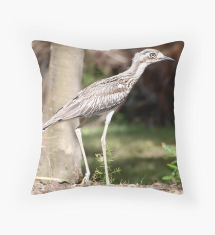 Bush Curlew Throw Pillow